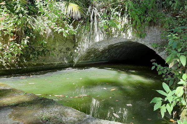 L'une des dernières barmes en fonctionnement est utilisée dans le Jardin Serre de la Madone, à Menton.