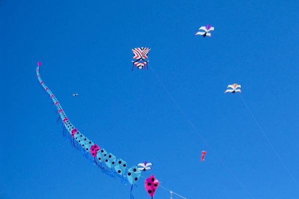 Du vent, des vacances, des cerfs-volants
