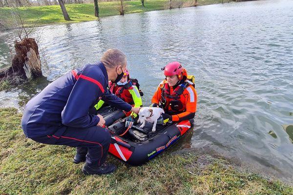 Sauvetage d'un Jack Russell à Salies-du Salat par les sauveteurs aquatiques de surface du SDIS31