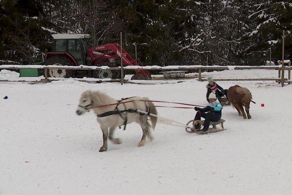 Le centre équestre des 3 Vallées propose des sessions de poney-luge aux enfants.
