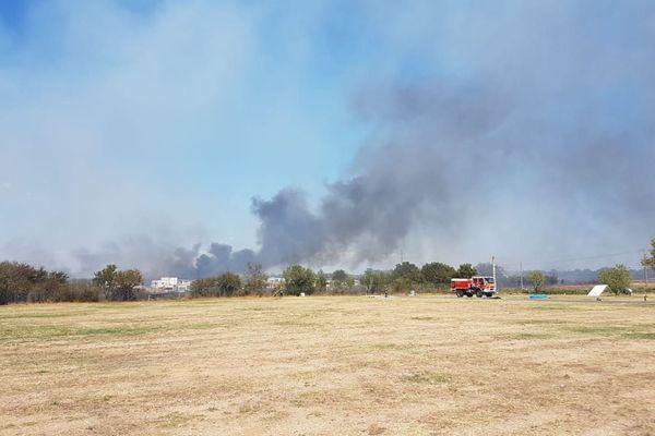 Un incendie s'est déclaré en bordure de la D612, sur la commune de Vias, dans l'Hérault - août 2018