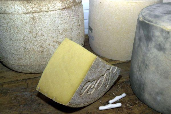 Sur la plateforme achetezenauvergne.fr, vous pouvez acheter en ligne des fromages d'Auvergne comme du Salers.