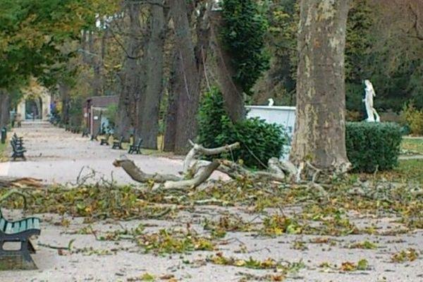 Quelques dégâts dans le Jardin des Plantes à Toulouse