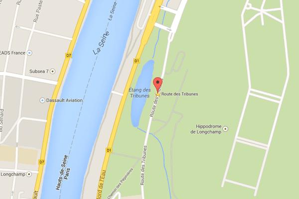 Du 4 au 5 octobre, l'hippodrome de Longchamp accueille 230 pur-sang, venus de France et de l'étranger.