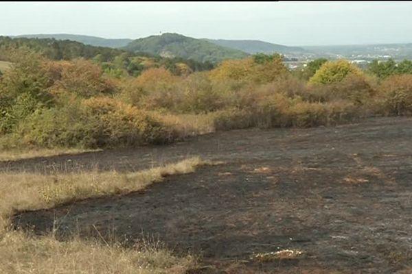 1,5 hectares sont partis en fumée