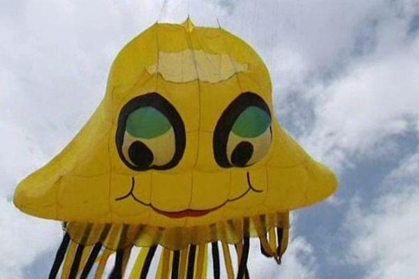 Des cerfs-volants géants, rigolos, colorés, ronds ou plats...un festival sur l'aérodrome de Til-Châtel !