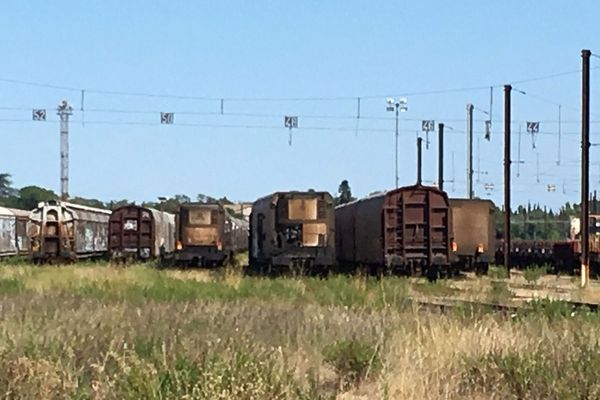 Nîmes - 37 wagons frigorifiques du train des primeurs stockés à Courbessac - août 2019.