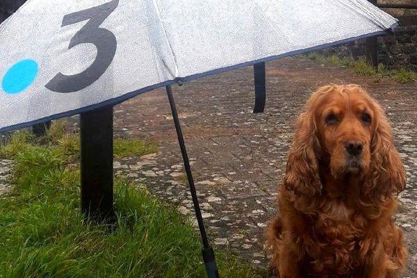 Simone, sous la pluie de Calais.