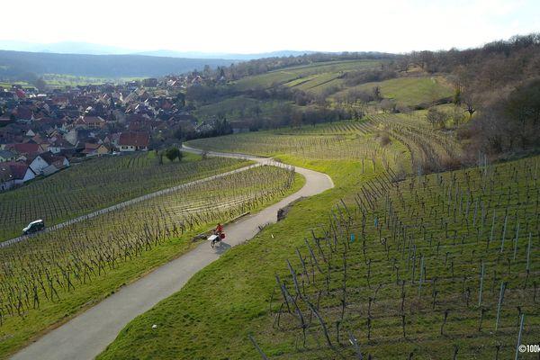 De Strasbourg au Sundgau, en passant par le massif vosgien et la traversée du vignoble, Jérôme Zindy prévoit de faire 23 étapes.