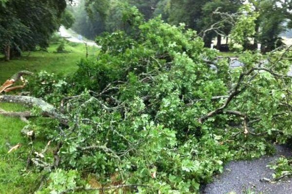 Les bourrasques ont brisé des branches. Samedi 27 juillet 2013