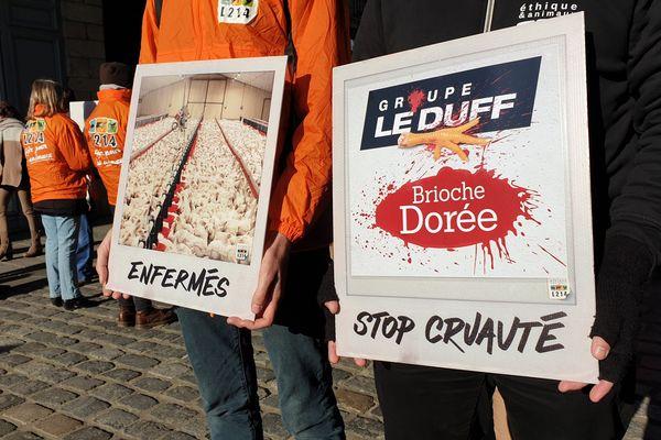 Les affiches de L214 contre l'élevage intensif des poulets du Groupe Le Duff.