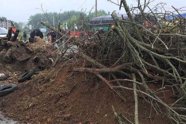 Des branches, de la terre déversées devant la raffinerie