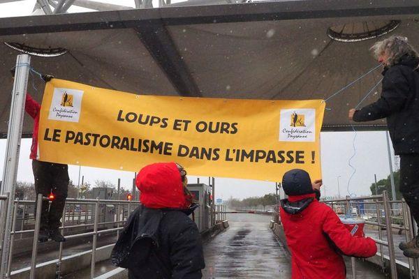 Des éleveurs avaient bloqué un péage dans l'Ariège, pour manifester contre l'invasion des loups.
