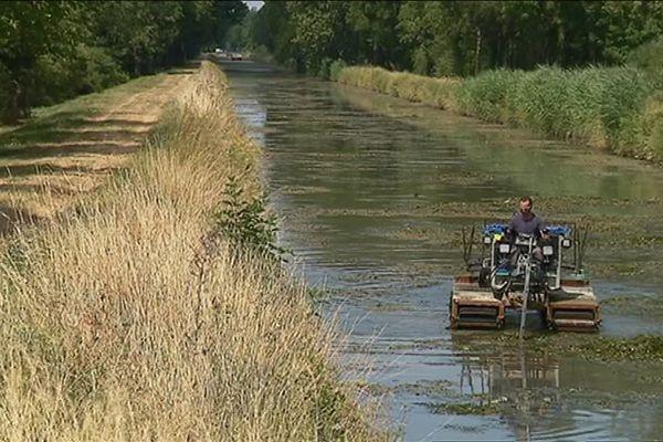 Le Canal de Berry sera bientôt à sec