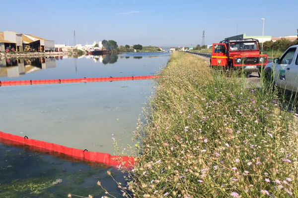 Frontignan (Hérault) - la cellule dépollution des pompiers de l'Hérault intervient sur le canal avec des barrages flottants - 21 juin 2018.