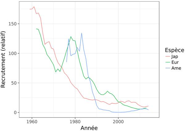 ce graphique indique clairement l'effondrement des populations depuis les années 80 en Europe et en Amérique, depuis les années 60 au Japon