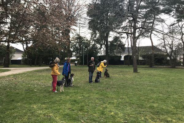"""Offre de savoir """"Education canine"""" au parc du Pot de fer à Saint-Cyr-sur-Loire en Indre-et-Loire"""