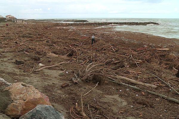La plage de Sainte-Marie-la-Mer après le passage de la tempête gloria - 26 janvier 2020