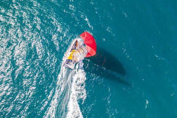 Made In Midi lors des test techniques de son nouveau mât. Le voilier du navigateur héraultais Kito de Pavant est presque prêt à reprendre la mer.