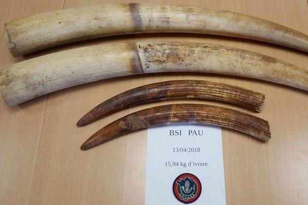 Les douanes de Pau ont saisi quatre défenses d'éléphants lors d'un contrôle sur l'A64 vendredi matin.
