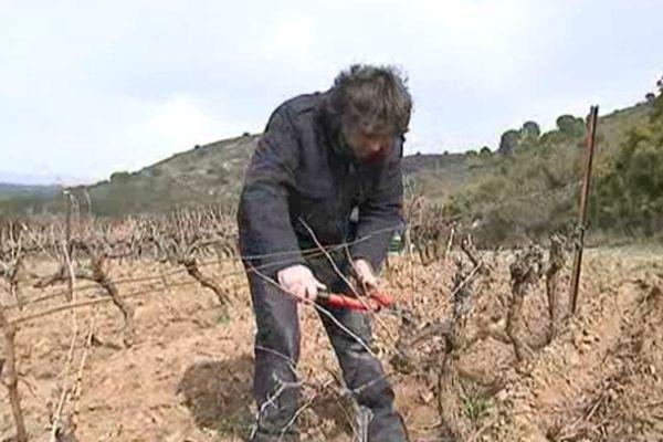 Estagel (Pyrénées-Orientales) - 70% des vignerons sont éligibles au RSA - février 2013.