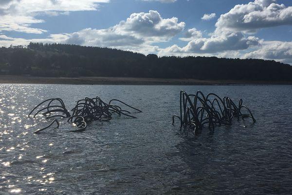 On peut voir les récifs en plastique dépasser en temps de sécheresse. Normalement, les tentacules sont entièrement immergées dans l'eau.