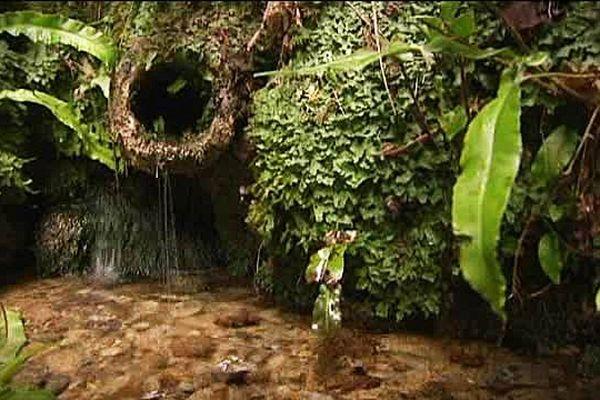 La source de la Dives, près de Gacé (Orne)