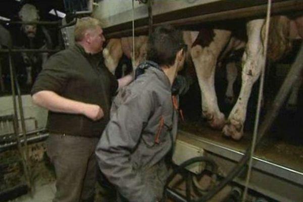 Beaucoup d'éleveurs laitiers renoncent à cette activité
