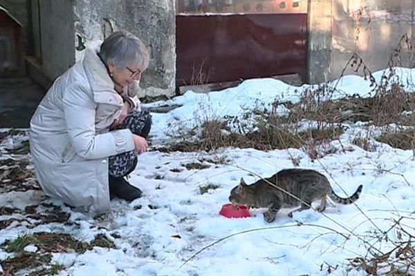 Michelle Javelle a délaissé quelques heures sa famille le jour de noël pour venir nourrir des chats sans maîtres