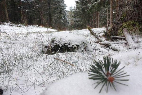 Les premiers flocons de neige sur le Mont Bessou en Corrèze le 22 novembre 2015