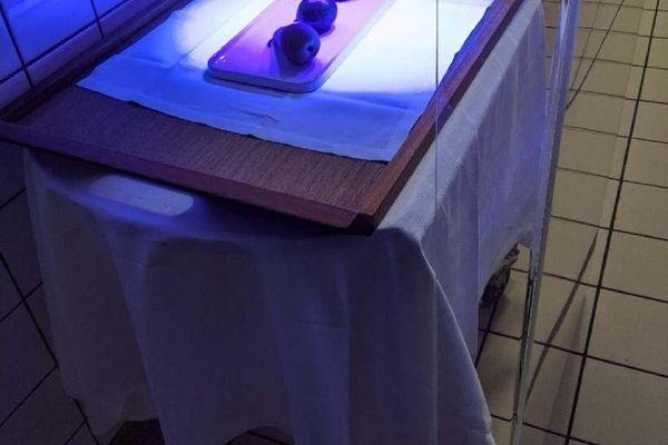 Les plats et leur contenu sont désinfectés à l'aide d'une lumière UV.