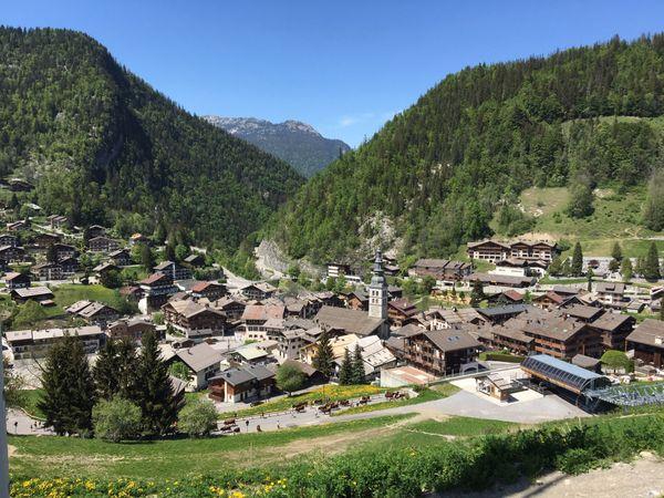 Transhumance des vaches à la Clusaz en Haute-Savoie