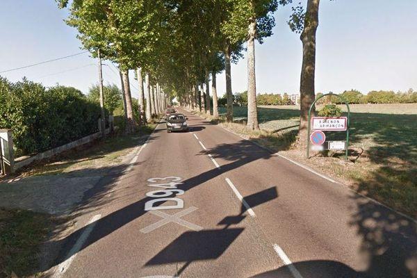 Les platanes qui jalonnent la D943 à l'entrée de la commune de Brienon-sur-Armançon