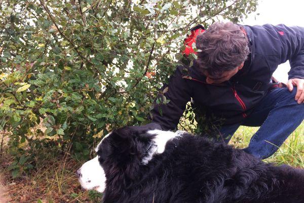 Le Président de la Fédération des Trufficulteurs de Dordogne Alain Klemeniuk et le chien Galopin en pleine recherche du précieux champignon