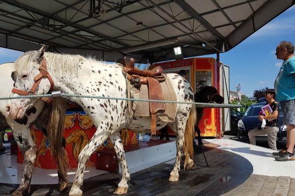 A Labarthe-sur-Lèze en Haute-Garonne, un manège à poneys présent sur la fête foraine a créé la polémique et a fait réagir une association de défense des animaux - juillet 2021.