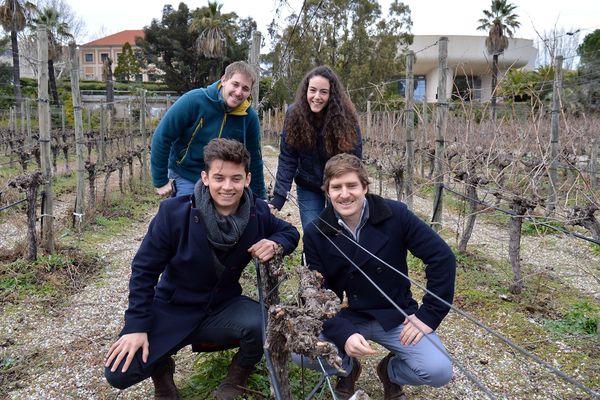 Bérenguer, Diégo,Thomas sont étudiants en viticulture-œnologie à SupAgro de Montpellier