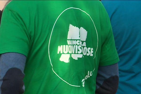 L'association Vaincre la Mucoviscidose organise les Virades de l'Espoir, pour collecter des fonds pour la recherche contre la mucoviscidose