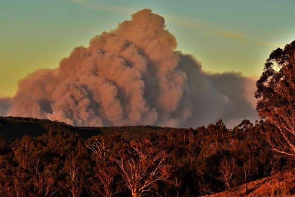 Les incendies touchent particulièrement le sud-est de l'Australie depuis le début du mois de janvier.