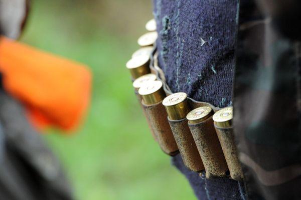 Un tiers des victimes d'accidents de chasse mortels ne sont pas chasseurs.