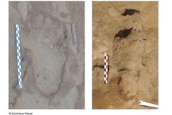 Il y a en tout 257 empreintes de pieds découvertes et analysées