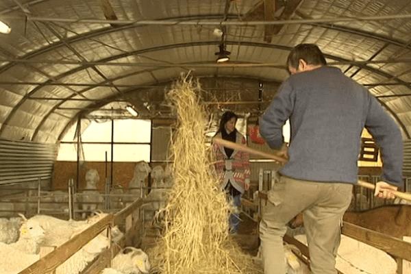 Solidarité Paysans du Limousin aide bon an mal an près de 200 familles