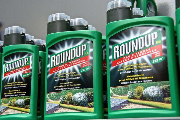 Le glyphosate est le nom d'une molécule commercialisée par l'entreprise Monsanto sous la marque Roundup.