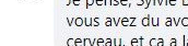 Réaction d'un internaute sur Facebook suite au post de Sylvie Bonaldi contre le port du masque