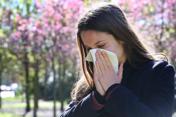 Traitement des allergies aux pollens