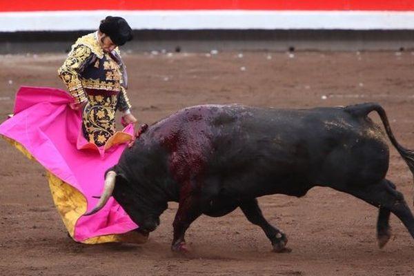 Manzanares vient de réaliser un quite par chicuelinas au 5ème toro. Morante de la Puebla lui répond...