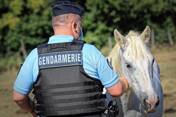 Illustration. Les gendarmes de Corrèze et de Haute-Vienne ont effectué des patrouilles nocturnes dans la nuit du mardi 29 au mercredi 30 septembre.