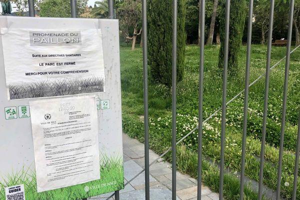 La promenade du Paillon, en passe de devenir véritablement une coulée verte ? Protégée derrière les grilles, la nature reprend ses droits...