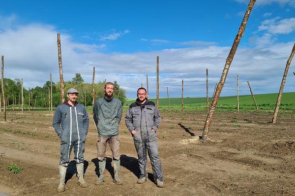 Etienne et Victor Joanot, avec Camille Maurois dans le champ destiné à la production de houblon.