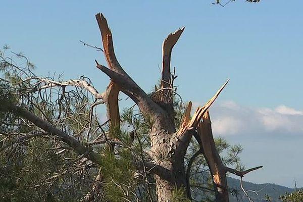 Venue d'Espagne, la tornade a parcouru environ 15 kilomètres côté français.