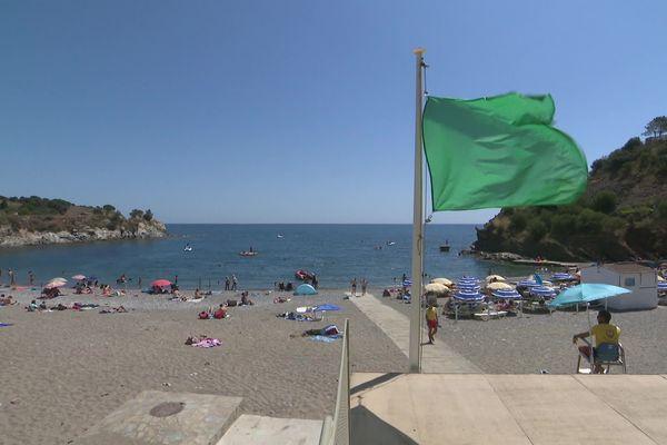 Drapeau vert sur une plage des Pyrénées-Orientales illustration